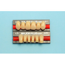 Hlavné zložené predné zuby 6ks