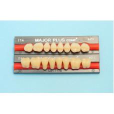 Hlavné bočné zložené zuby 8ks