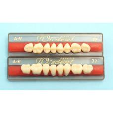 WIEDENT achterste tanden vlgs. Vity 8st