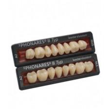Phonares Type II composiet achterste tanden. Op aanvraag beschikbaar